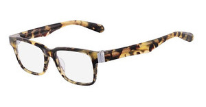 Dragon DR103 ANDY 281 TOKYO TORTOISE