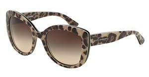 Dolce & Gabbana DG4233 287013 BROWN GRADIENTTOP LEO ON LEO