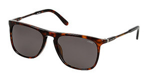 Lozza SL4002M 722P SMOKESHINY DARK HAVANA