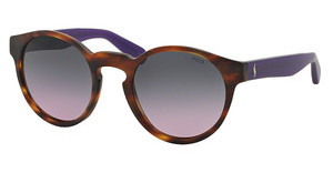Polo PH4101 556590 VIOLET GRADIENTMATTE STRIPPED HAVANA