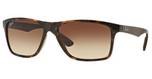 Ray-Ban RB4234 620513 BROWN GRADIENTHAVANA