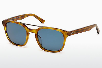 Óculos de marca Web Eyewear WE0156 53V - Havanna, Yellow, Blond, Brown