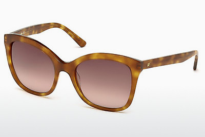 Óculos de marca Web Eyewear WE0165 53F - Havanna, Yellow, Blond, Brown