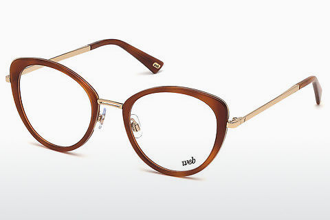 Óculos de design Web Eyewear WE5257 053