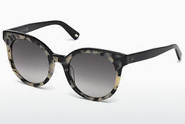 Óculos de marca Web Eyewear WE0195 56B - Havanna