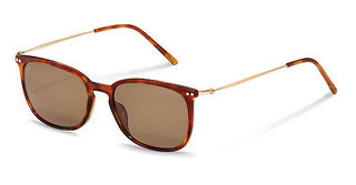Rodenstock R3306 D light havana, gold