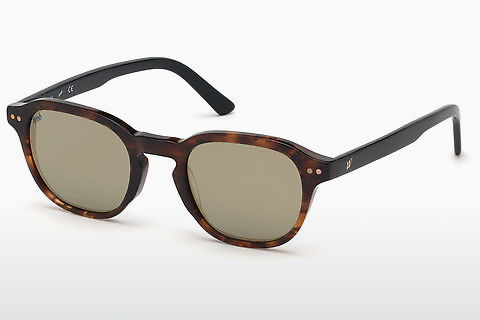Óculos de marca Web Eyewear WE0250 56C