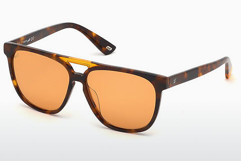 Óculos de marca Web Eyewear WE0263 56J