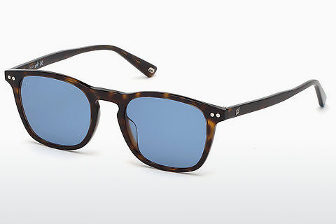 Óculos de marca Web Eyewear WE0265 52V