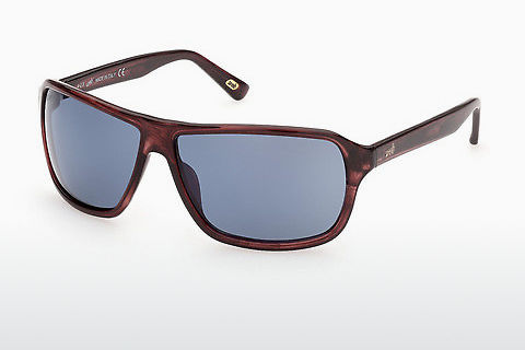 Óculos de marca Web Eyewear WE0301 69V